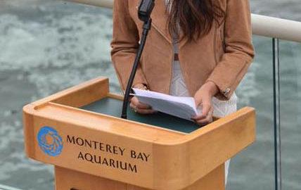 Anjali World Honoured at the Monterey Bay Aquarium