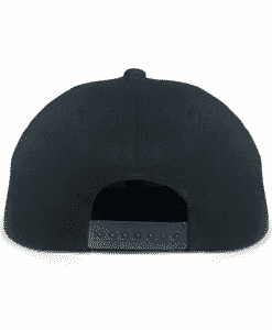 Black and White Urban Snapback Back