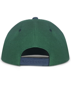 Green and Navy Blue Urban Snapback Back