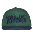 Green and Navy Blue Urban Snapback Front